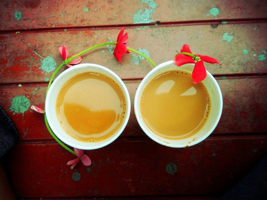 Palampur Tea